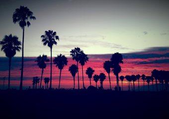 Venetian Splendor: The Ultimate Venice, CA Neighborhood Guide
